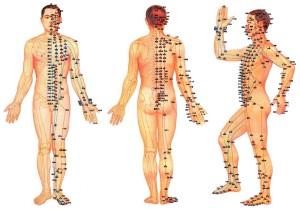 badanie żywej kropli krwi