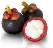 owoc-mangostan
