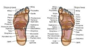 refleksoterapia1