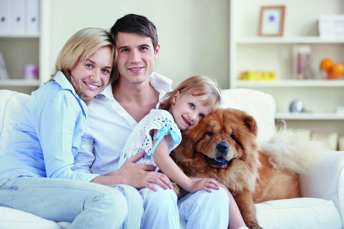 RS6849_sy_family_dog_couch_cl_8330721_clean_2014-scr